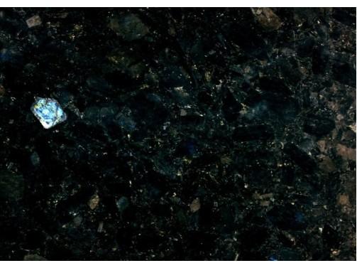 Granitas Labrador